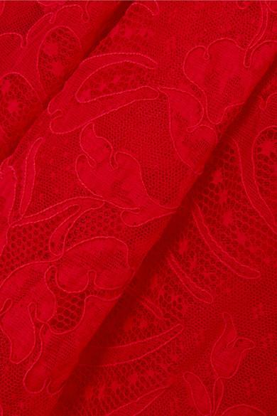 Alexander McQueen Lyon trägerlose Robe aus schnurgebundener Spitze und Tüll