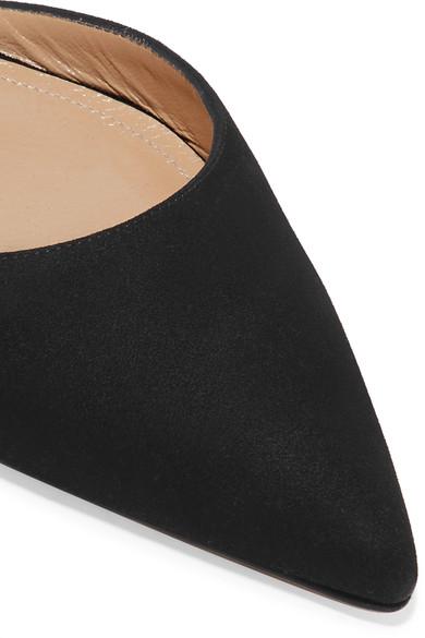 Paul Andrew | Rhea aus flache Schuhe mit spitzer Kappe aus Rhea Veloursleder 17b6b9
