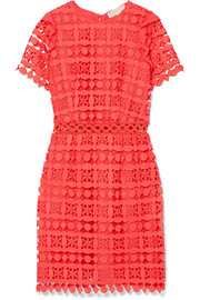 Ruffled corded lace and crepe de chine dress
