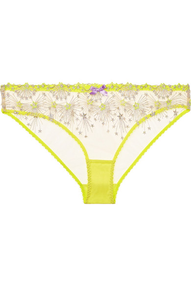 Kaylie embroidered tulle briefs