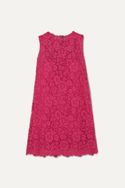 Dolce & Gabbana Cotton-blend lace mini dress