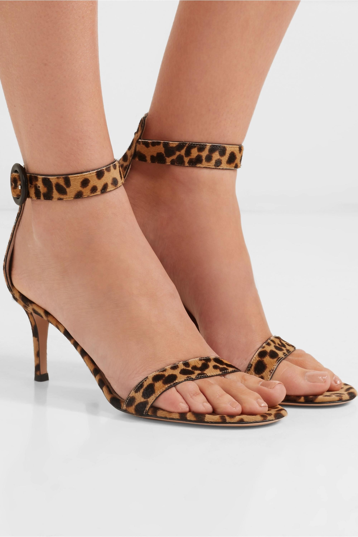 Gianvito Rossi Portofino 70 leopard-print calf hair sandals