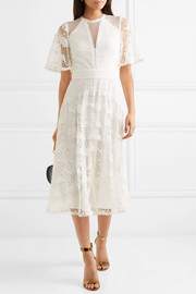 Haze guipure lace and tulle midi dress