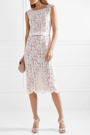 Belted guipure lace midi dress