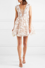 Rory embroidered tulle mini dress