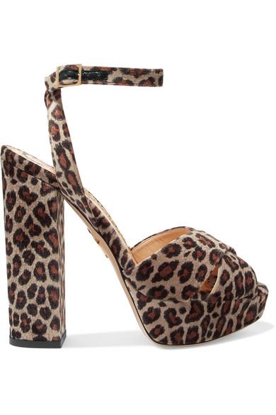 Charlotte Olympia - Velvet Leopard-print Platform Sandals - Leopard print