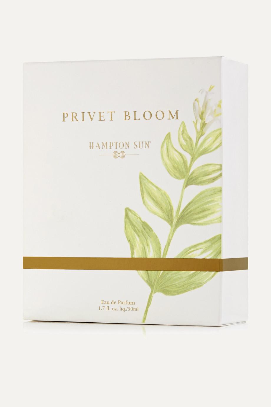 Hampton Sun Privet Bloom Eau de Parfum, 50ml