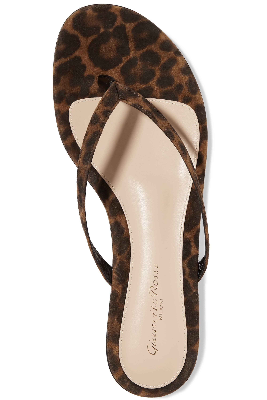 Gianvito Rossi Leopard-print suede flip flops