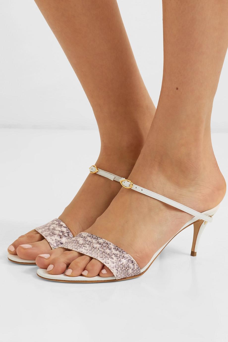 Jennifer Chamandi Andrea 65 elaphe and leather sandals
