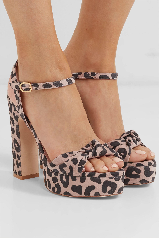 Leopard print Mirri knotted leopard