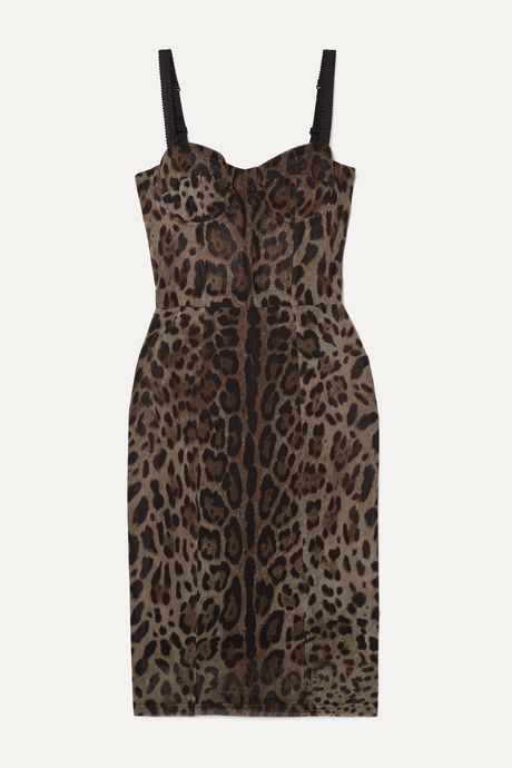 Brown Satin-trimmed leopard-print cotton and silk-blend tulle dress | Dolce & Gabbana LaY8k5