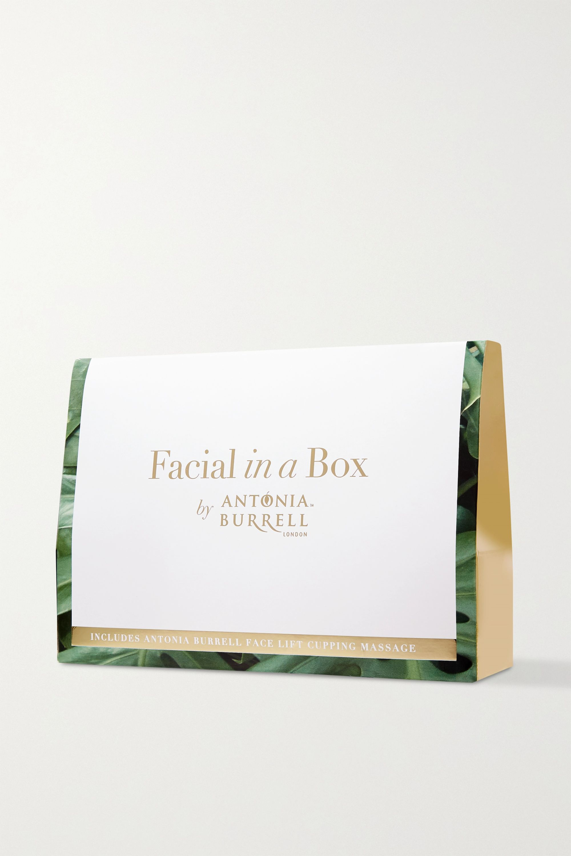 Antonia Burrell Facial Lift in a Box