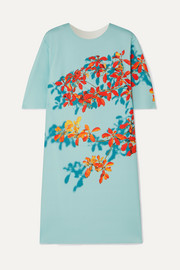 Dan floral-print stretch-scuba dress