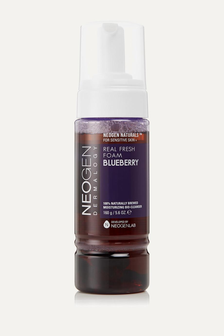 Neogen Dermalogy Real Fresh Foam - Blueberry, 160g