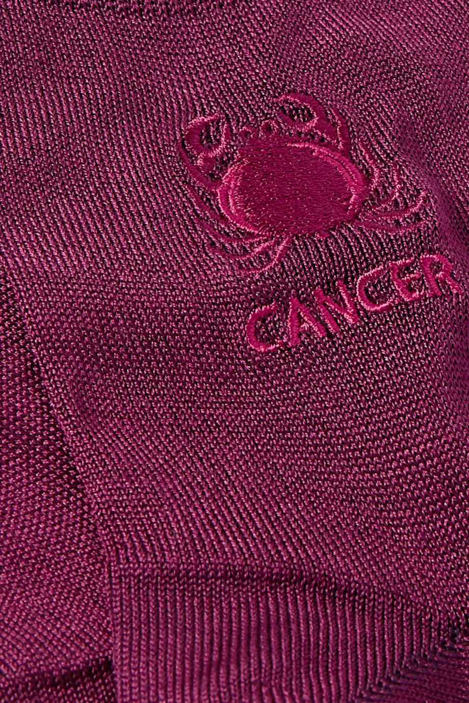 Maria La Rosa Cancer embroidered silk-blend socks