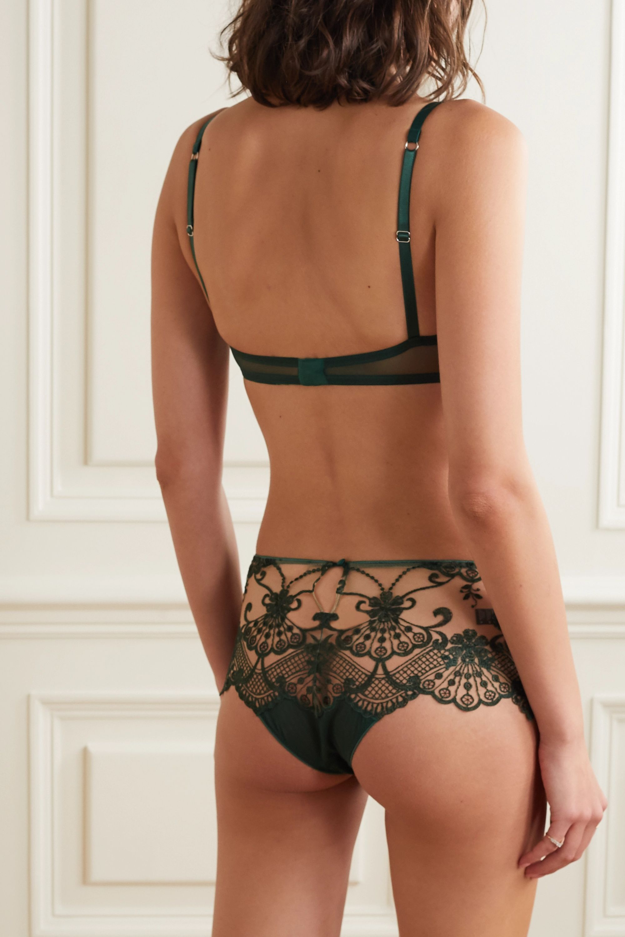 I.D. Sarrieri Midnight Dream embroidered tulle and satin briefs