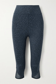 Eres Vitali cropped mesh-trimmed leopard-print stretch-knit leggings