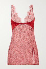 Coco de Mer Anthurium lace and satin camisole