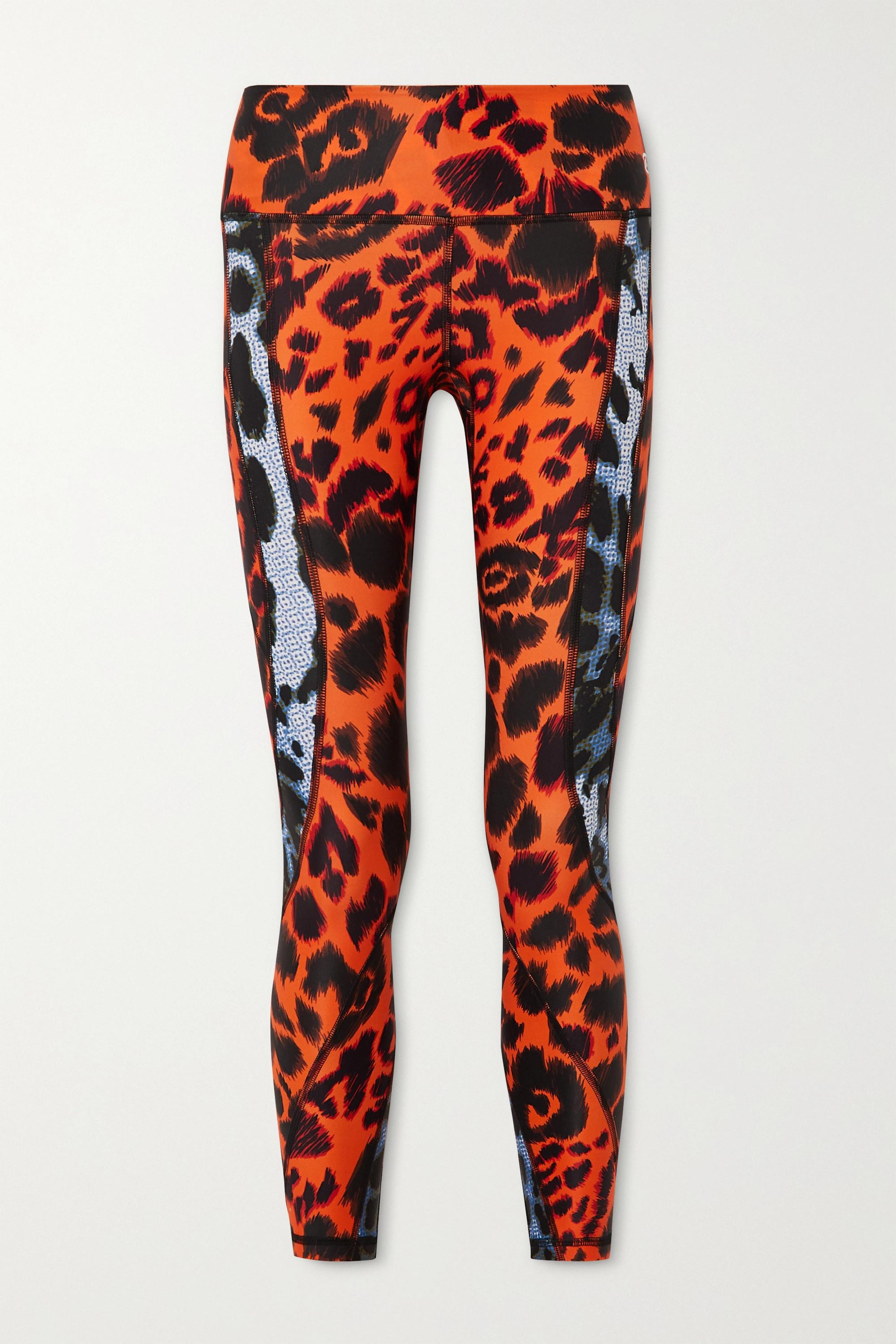 Twin Fantasy Paneled leopard-print stretch leggings