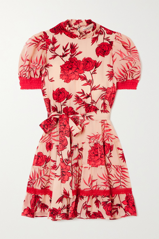Alice + Olivia Regan belted crochet-trimmed appliquéd chiffon mini dress