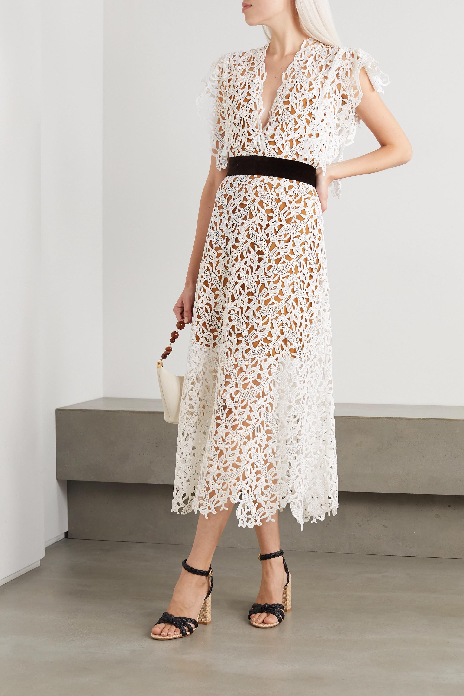 ARTCLUB Portia velvet-trimmed cotton-lace and silk-organza midi dress