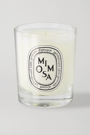 Diptyque Mimosa scented candle, 70g