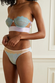 Dora Larsen Iris corded lace and stretch-tulle briefs