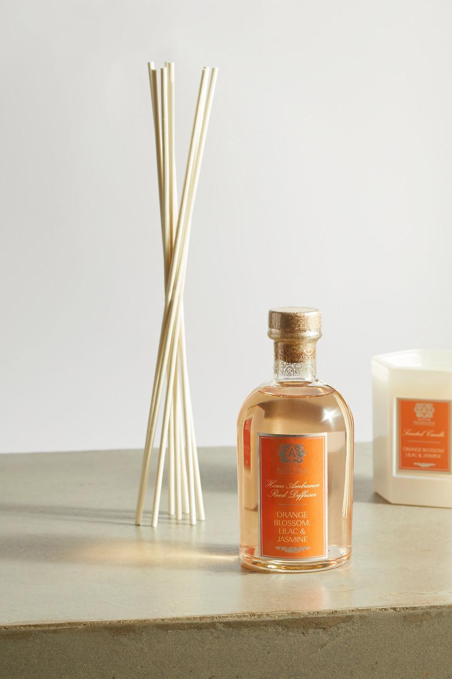 Antica Farmacista Orange Blossom, Lilac & Jasmine reed diffuser, 250ml