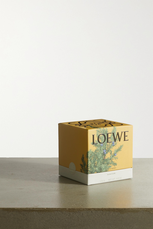 LOEWE Home Scents Juniper Berry kleine Duftkerze, 170 g