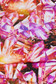 Matthew Williamson  close up