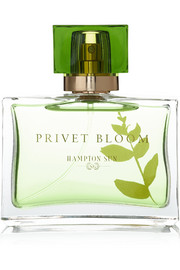 Hampton Sun Privet Bloom Eau de Parfum, 50ml