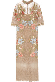 Biyan Inez embroidered lace and point d'esprit dress