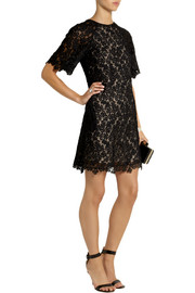 Erdem Aliya embroidered lace mini dress