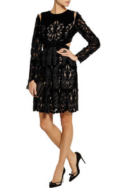 Erdem Franzi laser-cut embroidered velvet dress