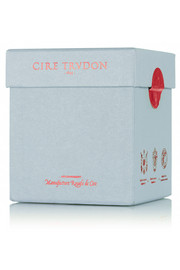 Cire Trudon Bartolomé scented candle, 270g