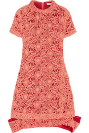 Michael van der Ham Macramé lace and silk-organza dress