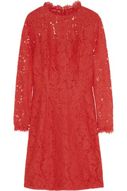 Coco cotton-blend lace dress
