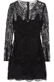Embroidered lace mini dress