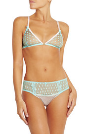 Hummingbird stretch silk-paneled polka-dot tulle briefs