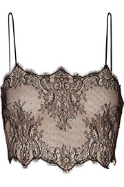 Cropped silk-lace and stretch-mesh top