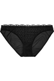 Volupte Plentitude embroidered tulle briefs