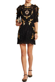 Embellished embroidered lace mini dress