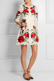 Dolce & Gabbana Embroidered lace mini dress