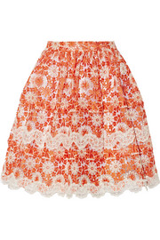 Lace-appliquéd embroidered organza skirt