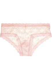 Hanky Panky Rose Garden stretch-lace briefs