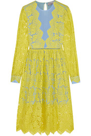 Preen by Thornton Bregazzi Berwick lace and crepe de chine dress
