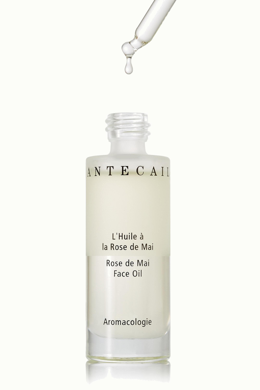 Chantecaille Rose de Mai Face Oil, 30ml