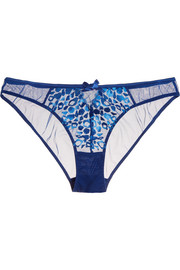 Odessa embroidered stretch-tulle briefs