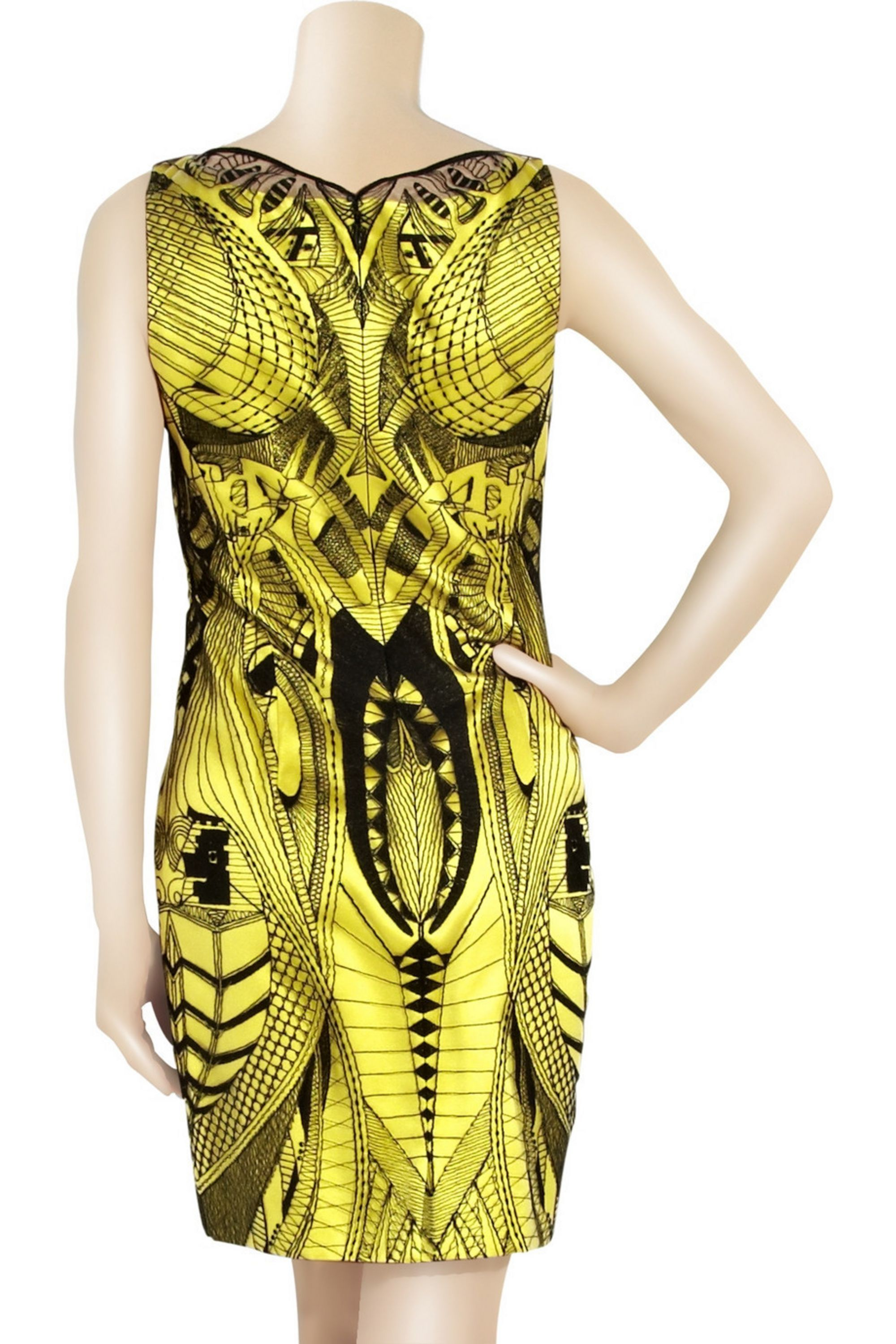 Alexander McQueen Graphic lace-embroidered dress