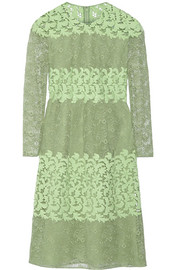Paneled cotton-blend lace dress